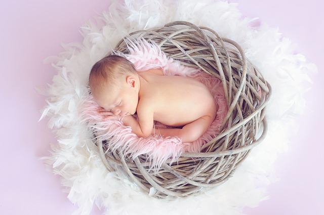 Kwantowy Pamiętnik Zmian – Ciąża
